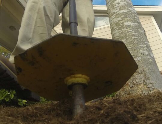 Deep Root Injection-Palm Beach Gardens Tree Trimming and Tree Removal Services-We Offer Tree Trimming Services, Tree Removal, Tree Pruning, Tree Cutting, Residential and Commercial Tree Trimming Services, Storm Damage, Emergency Tree Removal, Land Clearing, Tree Companies, Tree Care Service, Stump Grinding, and we're the Best Tree Trimming Company Near You Guaranteed!